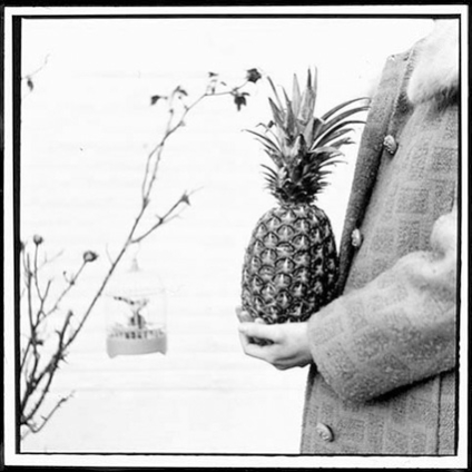 holding pineapple in Winter